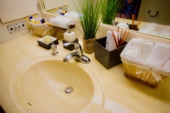 Master Stateroom Bathroom Photo 1